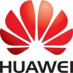 Опция 02310XRW Huawei Flash Card FBWC module
